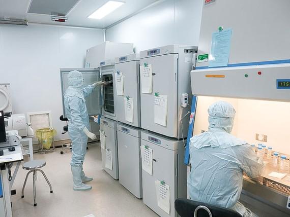 Là bệnh viện đầu tiên ở Việt Nam nghiên cứu áp dụng liệu pháp miễn dịch tự thân hỗ trợ điều trị ung thư, Bệnh viện Vinmec Times City đã xây dựng quy trình chuẩn, đảm bảo truyền tế bào miễn dịch an toàn, đạt hiệu quả tối ưu.