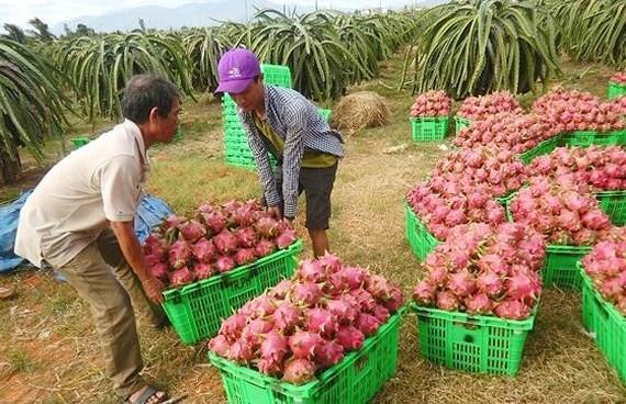 Kim ngạch thương mại Việt Nam - Trung Quốc đạt 106 tỷ USD