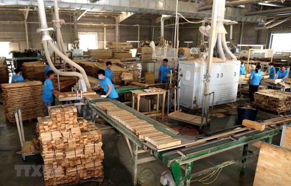 Sản xuất, chế biến gỗ tại Công ty TNHH khai thác, chế biến lâm sản Đà Lạt (Lâm Đồng). (Ảnh: Vũ Sinh/TTXVN)