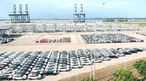 Ô tô nhập khẩu tại cảng SPCT. Ảnh: THÀNH TRÍ