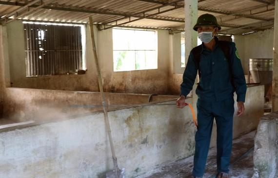 Lực lượng chức năng phun hóa chất tiêu độc khử trùng tại các trại chăn nuôi. (Ảnh: Công Tường/TTXVN)