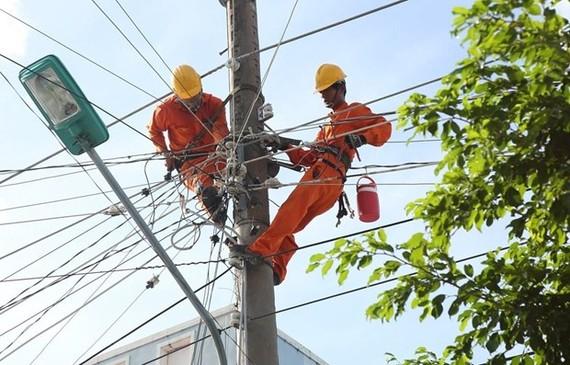 Tập đoàn Điện lực Việt Nam sẽ hoàn thành thoái vốn trong năm nay