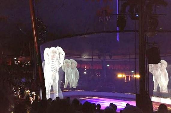 Đức: thay thế xiếc động vật bằng hình 3 chiều