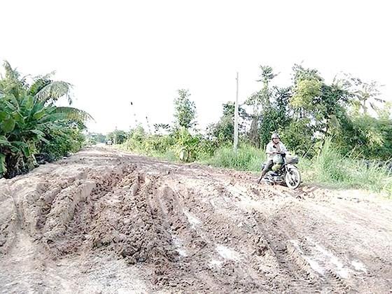 Nhiều đoạn đê bao của dự án bờ hữu ven sông Sài Gòn xuống cấp, gây lầy lội, hạn chế tác dụng chống ngập