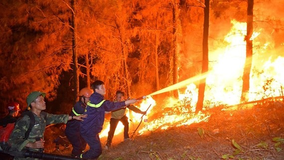 Cháy rừng tiếp tục diễn biến phức tạp