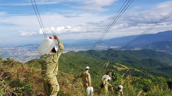 Vác từng can nước lên núi để bảo vệ đường dây 500kV qua Thừa Thiên - Huế