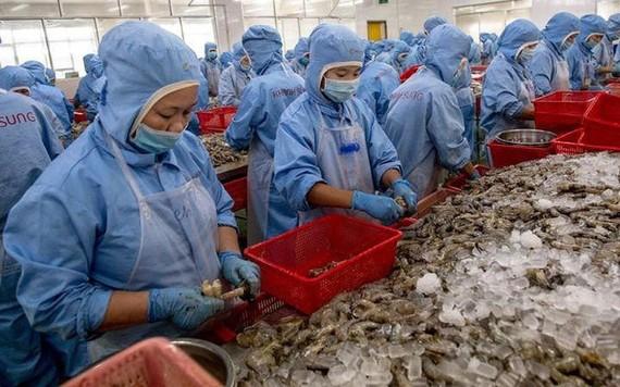 Mỹ công bố chính thức áp thuế chống bán phá giá tôm Việt 0%