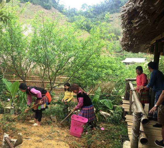 Du khách tham quan, trải nghiệm trồng hoa hồng tại A Chu Homestay