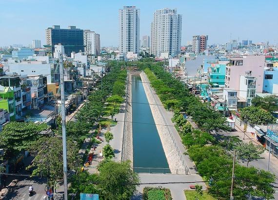 Cây xanh trên kênh Hàng Bàng (quận 5 và 6),TPHCM. Ảnh: CAO THĂNG 