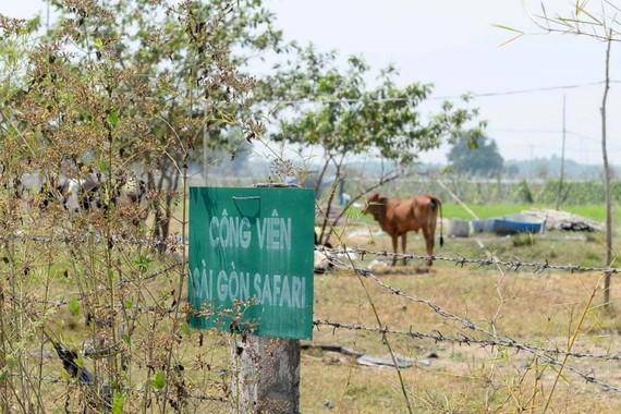 Phê bình nghiêm khắc lãnh đạo 2 sở và huyện Củ Chi
