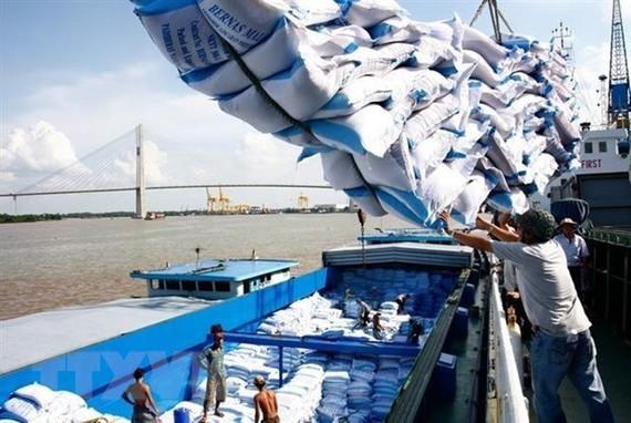 Việt Nam trở thành nước xuất khẩu gạo với khối lượng lớn, đứng thứ hai thế giới, góp phần vào an ninh lương thực quốc tế. (Ảnh: Đình Huệ/TTXVN)