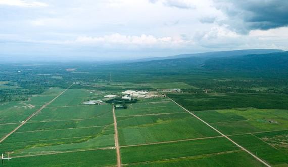 Vùng nguyên liệu organic tại Attapeu – Lào của SBT