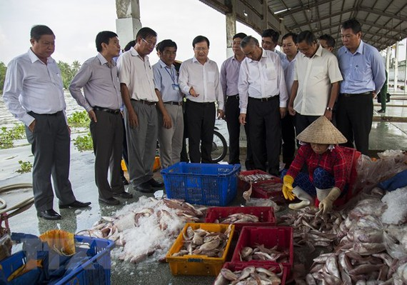 Phó Thủ tướng Trịnh Đình Dũng khảo sát tại Cảng cá Tắc Cậu, xã Bình An, huyện Châu Thành (Kiên Giang). (Ảnh: Hồng Đạt/TTXVN)