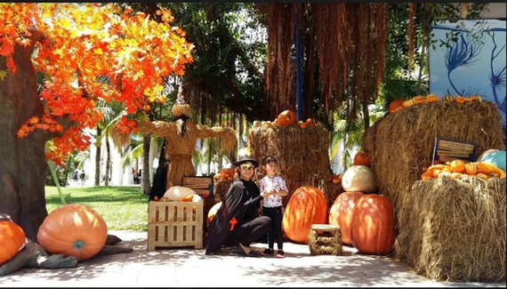 """""""Siêu bảo tàng"""" bí ngô Vinpearl mùa Halloween"""