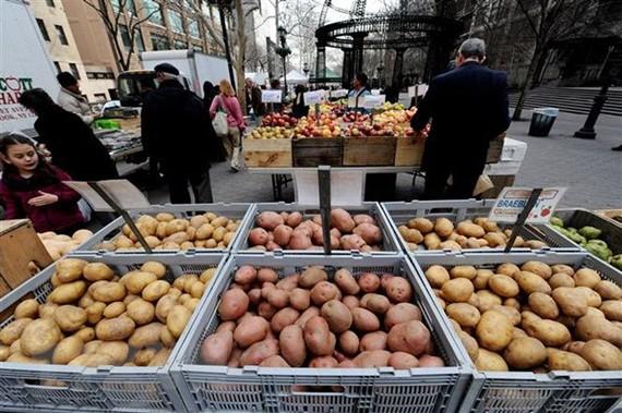 Rau củ quả được bán tại một khu chợ ở Washington, DC., Mỹ. (Nguồn: AFP/TTXVN)