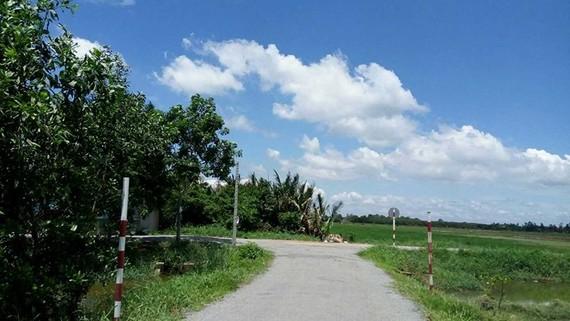 Điều chỉnh quy hoạch khu đất 384,2ha huyện Hóc Môn