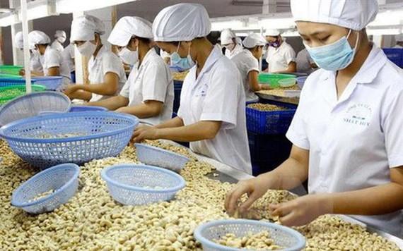 Việt Nam thúc đẩy ý tưởng về hiệp định thương mại giữa EU và ASEAN