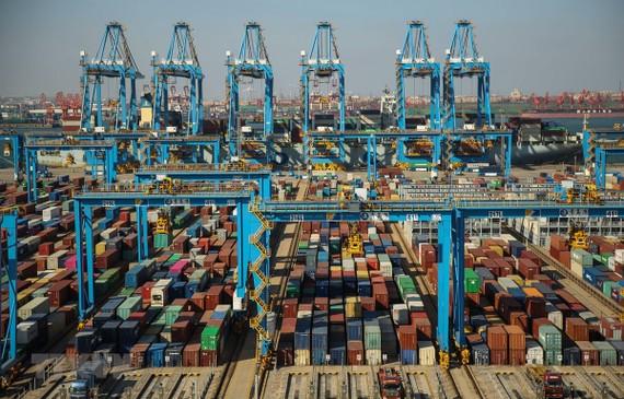 Cảng container hàng hóa ở Thanh Đảo, Trung Quốc. (Ảnh: AFP/TTXVN)