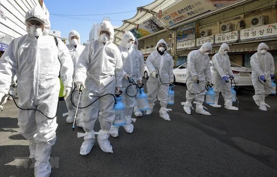 Nhân viên y tế phun thuốc khử trùng một khu chợ ở thành phố Daegu, Hàn Quốc ngày 23/2. (Ảnh: THX/TTXVN)