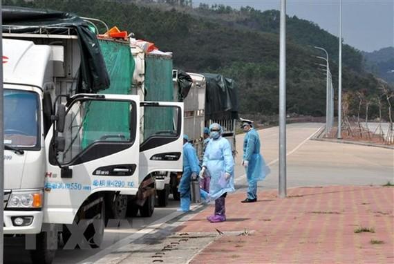 Các phương tiện được khử trung tiêu độc trước khi làm thủ tục thông quan. (Ảnh: Hữu Việt-Văn Đức/TTXVN)
