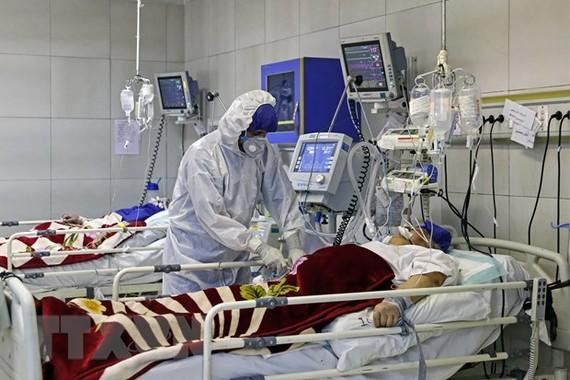 Iran đã có đến 237 ca tử vong vì COVID-19. (Nguồn: THX/TTXVN)