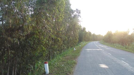 Sắp nâng cấp các tuyến quốc lộ qua Đồng Tháp