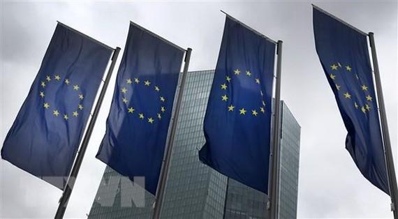 EU thông qua biện pháp giải ngân lập tức các quỹ đối phó dịch COVID-19