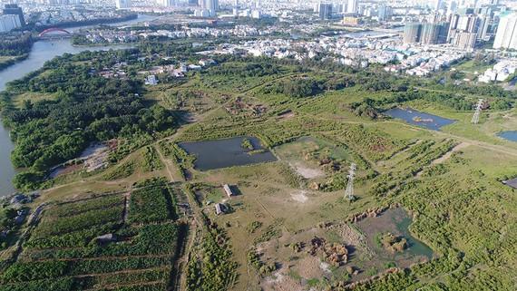 Sớm hoàn tất thủ tục những dự án đã có quyết định giao đất, thuê đất
