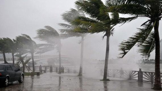 Mùa bão 2020 muộn hơn, Việt Nam sẽ đón nhận 11-13 cơn bão