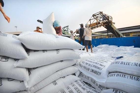 Xuất khẩu 400.000 tấn gạo: Có dấu hiệu bất thường, bỏ trúng thầu sang xuất khẩu