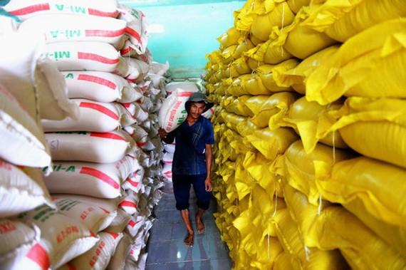Bộ Công thương, Tài chính phải báo cáo Thủ tướng việc xuất khẩu gạo