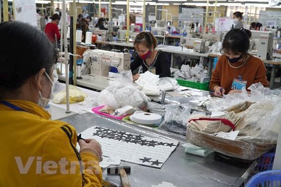 Nhiều doanh nghiệp bị ảnh hưởng bởi dịch COVID-19. (Xuân Quảng/Vietnam+)