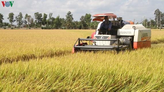 """An ninh lương thực và nông lâm thủy sản phục vụ xuất khẩu là mục tiêu kép của ngành nông nghiệp trong """"tình hình mới""""."""