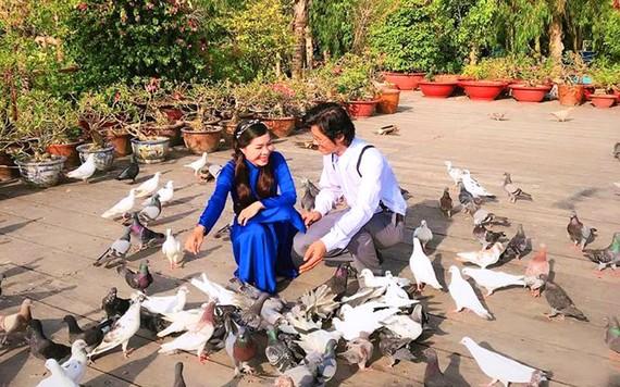 Hàng trăm chú chim bồ câu thân thiện vây quanh du khách.
