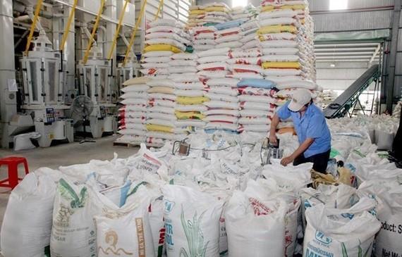 Giá trị xuất khẩu gạo 6 tháng tăng 18% so cùng kỳ