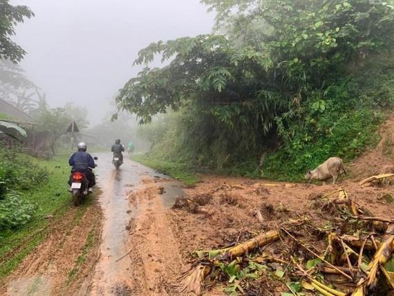 Khu vực Tây Bắc Việt Nam có thể xuất hiện động đất cấp 8-9