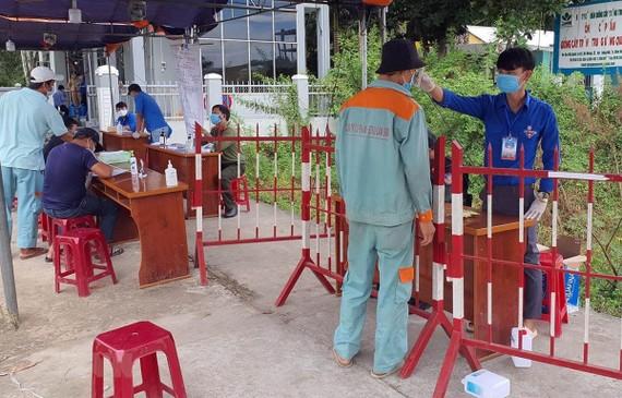 Thanh niên tình nguyện chung tay phòng, chống dịch COVID-19. (Ảnh: Trần Tĩnh/TTXVN)