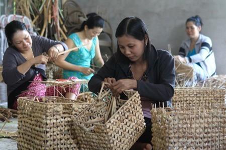 IFC hỗ trợ doanh nghiệp siêu nhỏ, nhỏ châu Á-TBD ứng phó dịch Covid-19