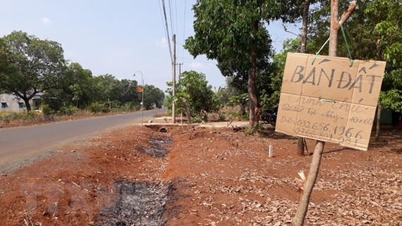 Bình Phước sốt đất sau thông tin khảo sát khu vực sân bay Téch Ních. (Ảnh: K GỬIH/TTXVN)