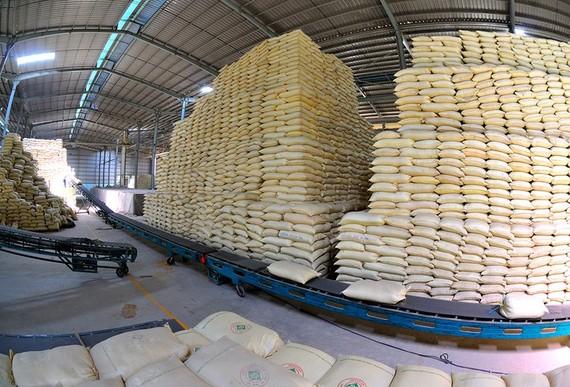207 doanh nghiệp được xuất khẩu gạo