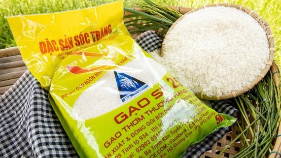 Tăng cường vị thế bền vững cho gạo Việt Nam