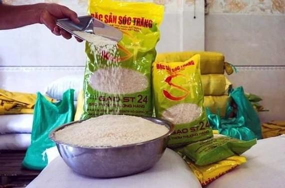 Bảo hộ sở hữu trí tuệ gạo ST 25: Bài học lớn cho doanh nghiệp Việt