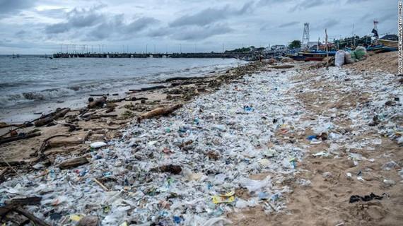20 công ty lớn nhất sản xuất một nửa số rác thải nhựa dùng một lần của thế giới