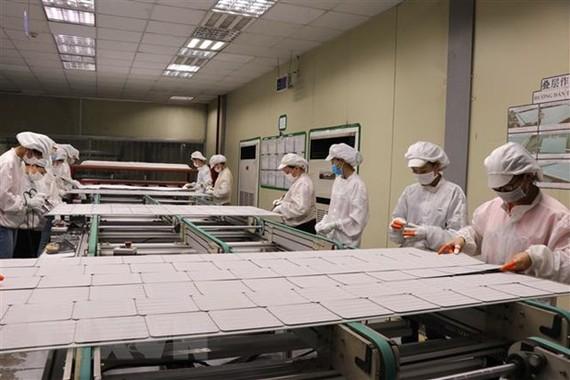 Doanh nghiệp vẫn hạn chế trong nắm bắt các ưu đãi từ Hiệp định CPTPP. (Ảnh: Thái Hùng/TTXVN)