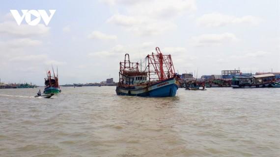 Xử lý tổ chức, cá nhân để tàu cá khai thác hải sản trái phép để khắc phục thẻ vàng IUU.