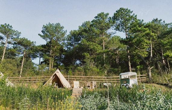 Khu du lịch, cắm trại sinh thái Makakamp tại TP Đà Lạt.