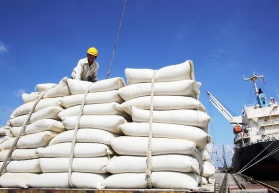 Nhập gạo Ấn Độ tăng đột biến, hoả tốc lập đoàn kiểm tra 5 doanh nghiệp