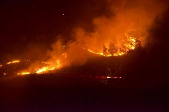 Vụ cháy rừng ở Sóc Sơn được coi là lớn nhất từ trước đến nay