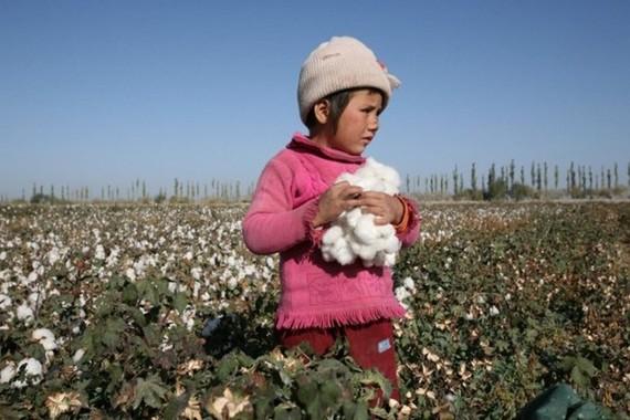 Lượng phát thải khí carbon quá mức đang đe dọa tương lai của tất cả trẻ em