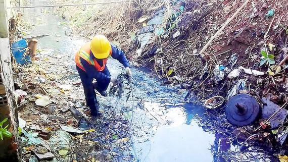 Vi phạm Luật Bảo vệ môi trường có thể phải lao động công ích